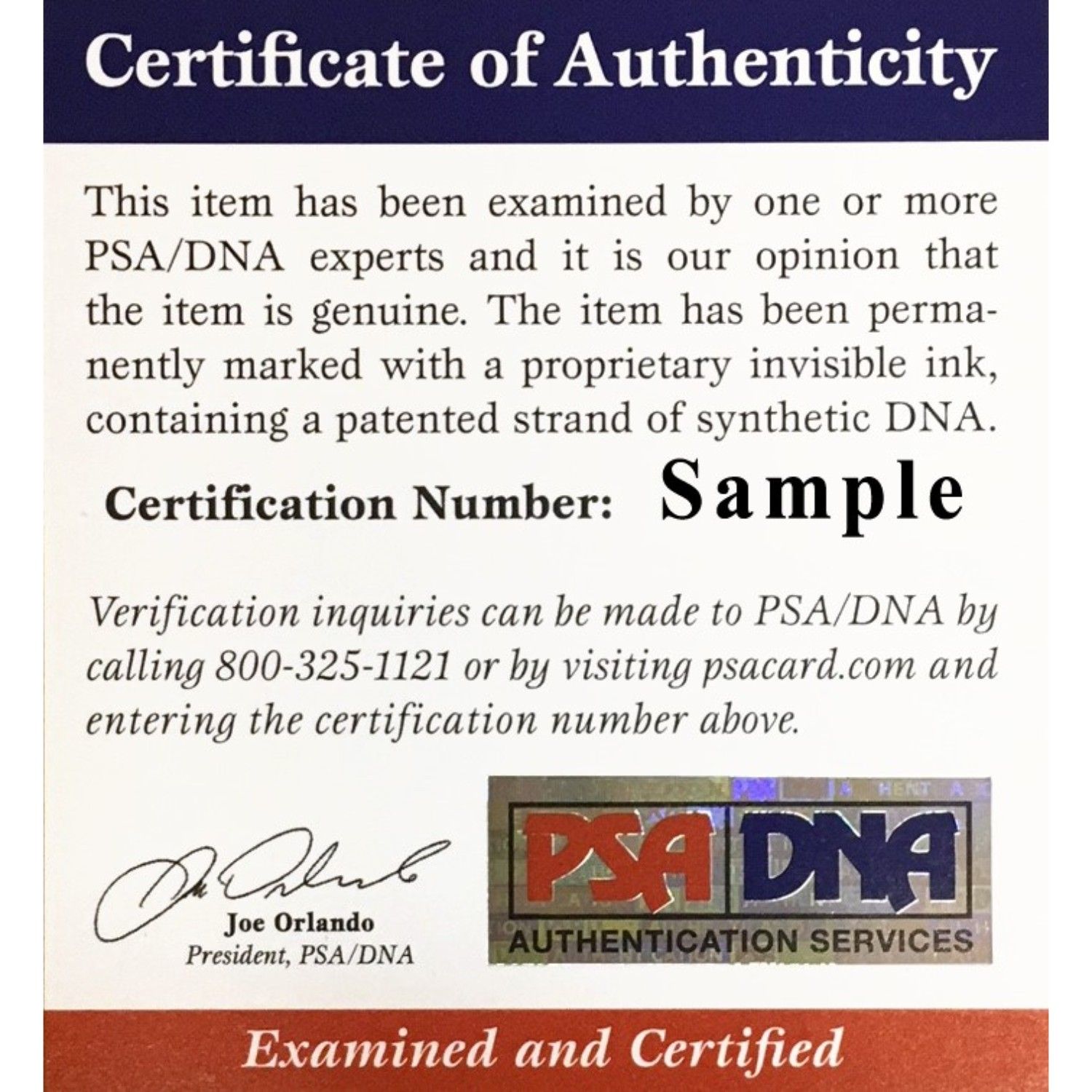 Peyton Manning Denver Broncos Autographed Official NFL Authentic Duke Signed Football PSA DNA COA Future NFL Hall of Famer and former Denver Broncos superstar quarterback Peyton Manning has autographed this officially licensed authentic NFL full size football (same one used in the games)!  Autograph is authenticated by PSA/DNA, the world's leading authenticator of sports autographs. Comes with their unique sticker # fixed to the item and verified on their website. Also, comes with their certificate of authenticity with same matching #. Don't miss out on this item at this price!